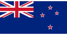 Parcel delivery to New Zealand by Airmail Non Tracked upto 2kg or Tracked upto 2kg
